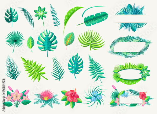 Tropical Leaves and Exotic Flowers Set on White