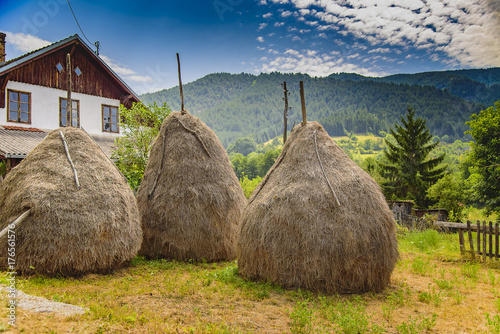 Obraz na plátne Haystacks in the field, countryside life