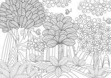Fantasy Forest For Coloring Book