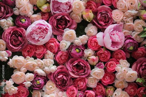 Foto op Aluminium Roses Roses in pink and red