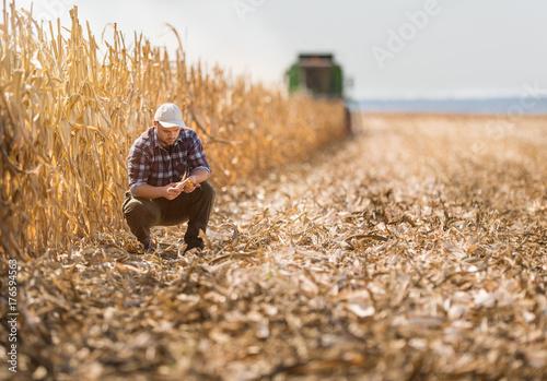 farmer in corn fields Canvas Print