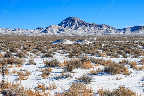 Frozen Nevada Landscape