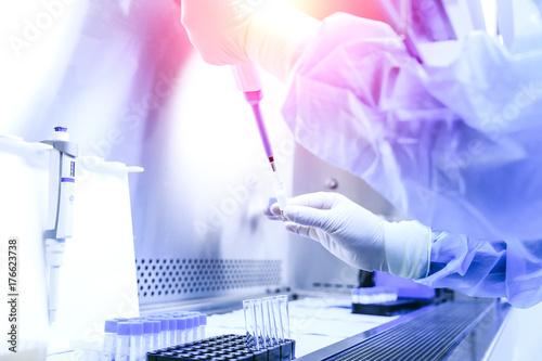 Fotografie, Obraz  The scientist experimented in the laboratory