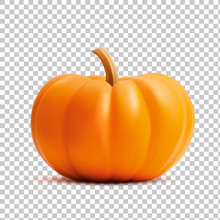 Bright Orange Vector Realistic...
