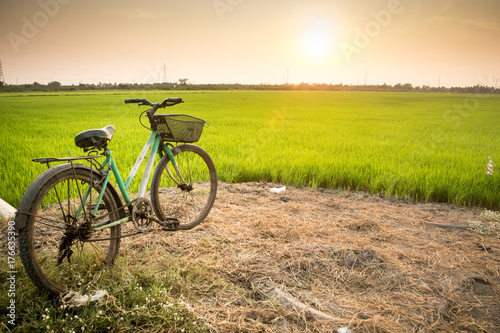 Aluminium Prints Bicycle Adventure with bicycle in countryside (sunset background)