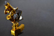 Vintage Brass Microscope