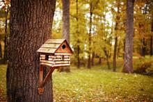 Birdhouse In Autumn Park