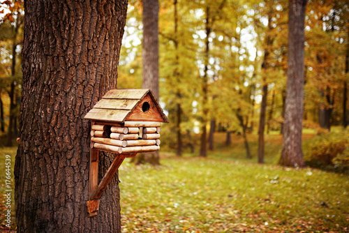 Photo birdhouse in autumn park