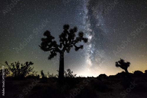 Fototapeta Droga Mleczna w Joshua Tree