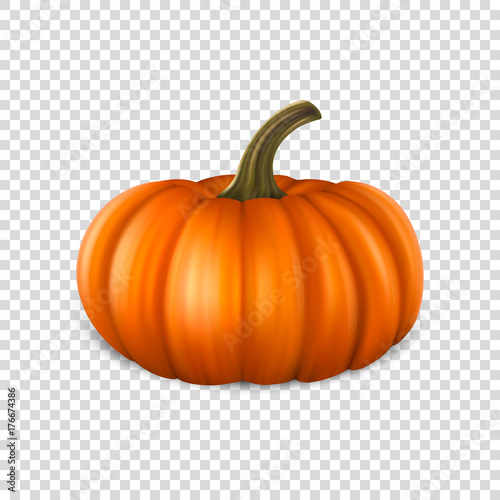 Realistic pumpkin closeup isolated on transparency grid background Fotobehang
