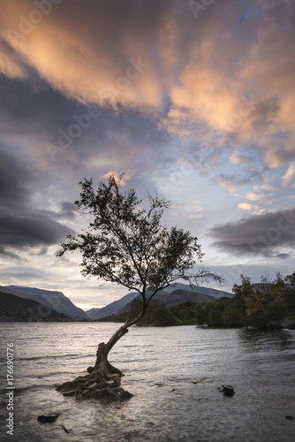 Tuinposter Zalm Beautiful landscape image of Llyn Padarn at sunrise in Autumn in Snowfonia National Park