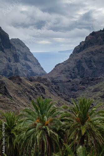 Printed kitchen splashbacks Canary Islands view on Teno Mountains