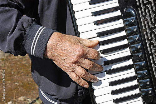 Fotografia, Obraz  accordionist at the concert