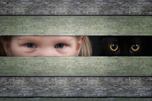 The Eyes Of A Child And Cat Wa...