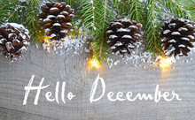 Hello December.Christmas Decor...