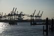 Hamburg Harbor Cranes