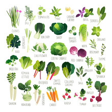 Clipart Collection Of Vegetabl...