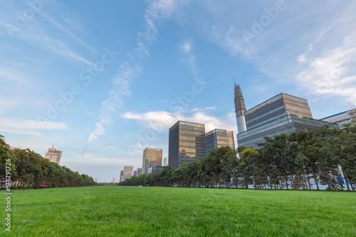 Plakat zielony trawnik w centrum miasta