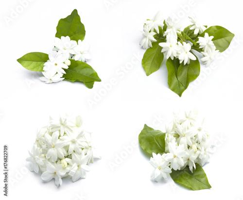 Photo  Jasmine flowers refreshing