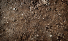 Wet Ground With Footprints. Mud Ground With Human Footprints. Soil Background
