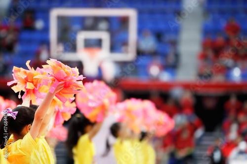 Fotomural バスケットボール会場のチアガール