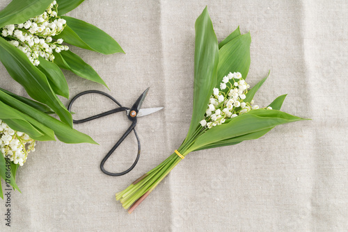Bouquets of lilies of the valley with scissors