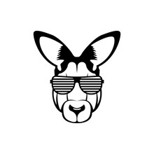 Vector Kangaroo Head, Face  For Retro Hipster Logos, Emblems, Badges, Labels Template And T-shirt Vintage Design Element. Isolated On White Background