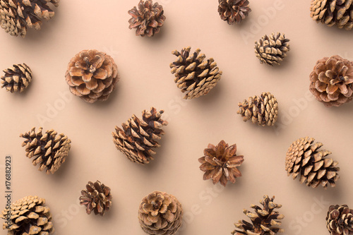 Pine cones pattern on a neutral background. Top view. Repetition