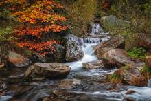 Small Autumn Waterfall In Krkonose - Czech Republic