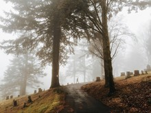 Person In The Distance Walks Through Foggy Cemetery