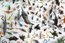 Colorful Toy Animal Collection