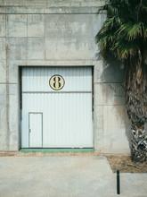 Garage Door And Palm Tree