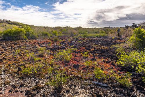 Staande foto Lavendel Galapagos Islands - August 23, 2017: Landscape near Las Grietas in Santa Cruz Island, Galapagos Islands, Ecuador