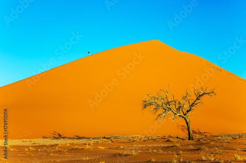 Zdjęcie XXL Pustynia Namib. Namibia