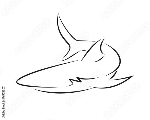 Valokuva  Black line shark on white background