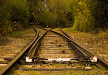 Railway In The Forest With A F...