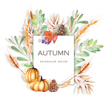 Watercolor Autumn Floral Card Illustration, Fall Banner Design, Hand Painted On A White Background