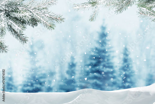 Photo Stands Light blue Merry christmas and happy new year greeting background with copy-space.Winter landscape with snow and christmas trees