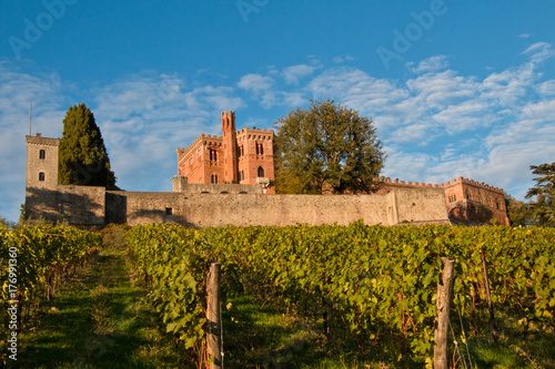 Canvastavla  Brolio castle chianti