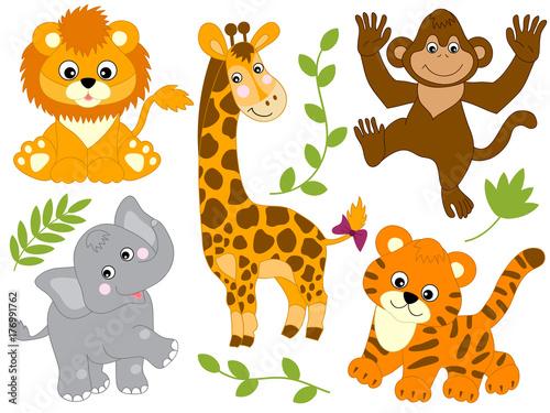 Vector Set of Jungle Animals Canvas Print