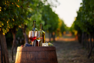 Wine tasting in the vineyard. Two glasses of white and red wine with bottles at sunset.
