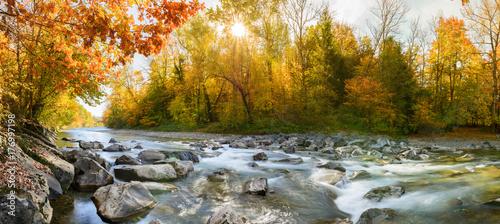 Plakat Idylliczna panorama w lesie jesienią nad wodą - kolor w lesie nad rzeką