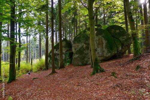 Granit Felsen Fichtelgebirge Gestein Foto © sonne_fleckl