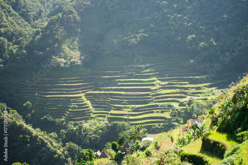 Fotobehang Rijstvelden Batad Rice terraces, Banaue, Ifugao, Philippines