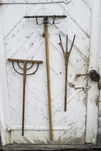 Old Farm Tools Hanging On A We...