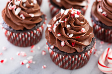 Chocolate Peppermint Cupcakes With Candy Cane