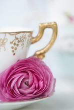 Vintage Teacup And Ranunculus Flower