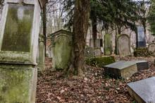 Alte Grabsteine Verlassenen Fr...