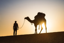 Man And His Camel In The Desert