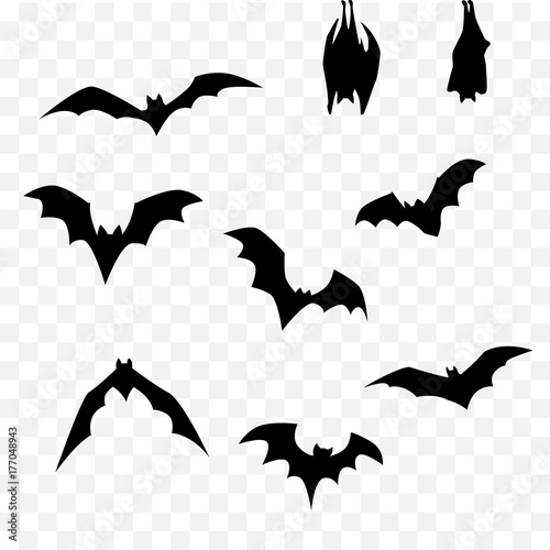 halloween bat set Canvas Print